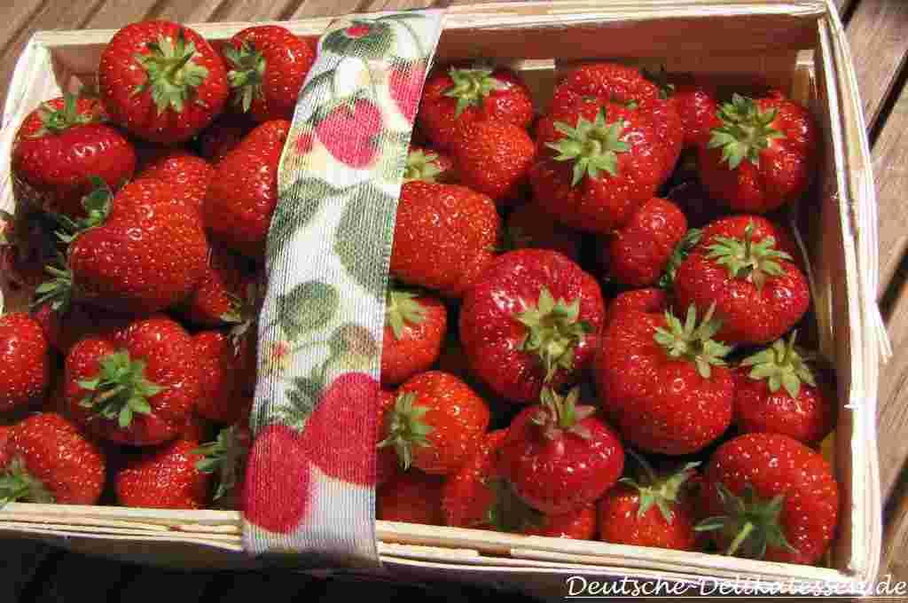 Erntefrische Erdbeeren im Spankorb