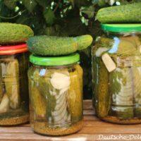 Gewürzgurken im Glas eingelegt