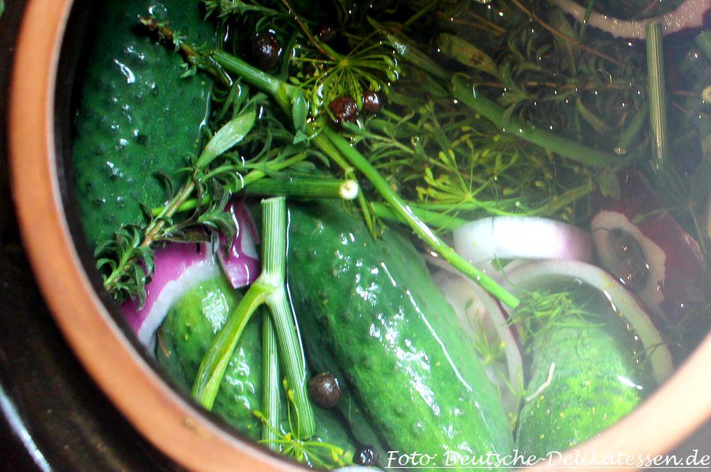 Eingelegte Gurken mit Dill im Tontopf